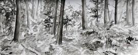 »Wald 2« Isabel Glapa