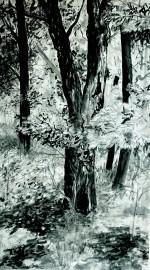»Wald Hochkantbaum« Isabel Glapa